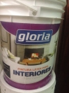 Pintura Interiores 100% Lavable Gloria 18 Lt.